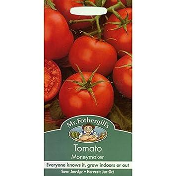 Semillas del señor Fothergill - Tomate Moneymaker
