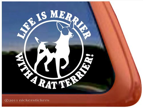- Life Is Merrier with a Rat Terrier Dog Vinyl Window Decal