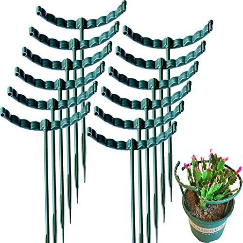 12 Pack Plant Support Garden Flower Support Plant Stakes, Metal Half Round Plant Support Ring Plastic Plant Cage Holder Flower Pot Climbing Trellis for Small Plant Flower Vegetable (5.5 x 9.5 Inch)
