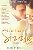 Love Slave: Sizzle (Love Slave Anthology Book 5)