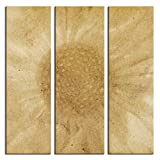 JP London 3 Panels At 16in by 48in Triptych 3 Huge Gallery Wrap Canvas Wall Art Hendrix Grunge Flower Power At Overall 4 4 Feet LTCNV2092, Extra Large