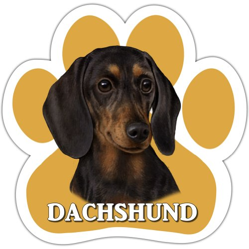 Dachshund, Black Car Magnet With Unique Paw Shaped Design Measures 5.2 by 5.2 Inches Covered In UV Gloss For Weather Protection