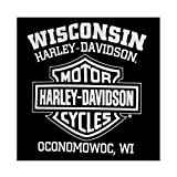 Harley-Davidson Mens T-Shirt Eagle Graphic Short