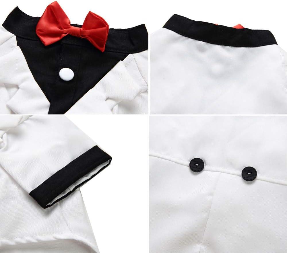 JLCYYSS Camisa para Perros Ropa para Perros Pequeños para Mascotas ...