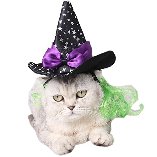 Bravo Sport Halloween Pet Wizard Hat, Black Witch Cap With Star Decor, Party Costume Wizard Head Wear Cosplay Accessories for Cats and Small Dogs Free Size -
