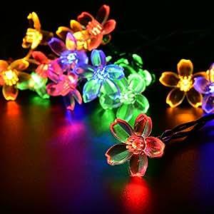LEEPO Solar Power Outdoor Waterproof String Lights Sakura 15.7ft 20 LED for Homes, Christmas, Gardens (Multi Color) Ca