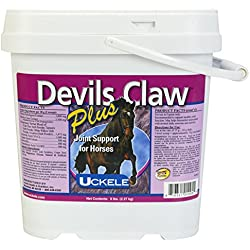 Devils Claw Plus Powder, 5 lb