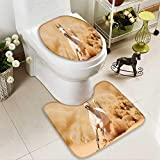 SOCOMIMI 2 Piece Toilet mat Set Collection Arabian Horse Breed Running Out of The Desert Storm Sand High Tail 2 Piece Shower Mat Set