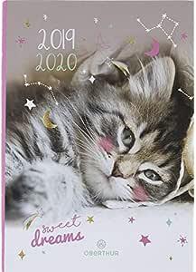Oberthur Sweet Dream 2019/2020 - Agenda escolar (12 x 17 cm), diseño de gato: Amazon.es: Oficina y papelería