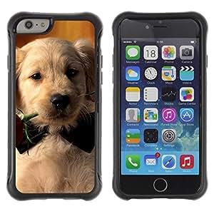 LASTONE PHONE CASE / Suave Silicona Caso Carcasa de Caucho Funda para Apple Iphone 6 PLUS 5.5 / Labrador Retriever Rose Bowtie Puppy Dog