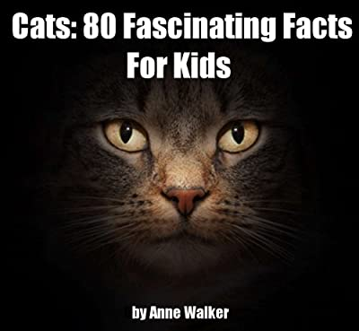 Cats: 80 Fascinating Facts For Kids About Cats
