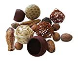From The Attic Crafts Rag Ball, Twig Balls, Pods, Seeds Bowl Filler Set Brown and Tan 11 pieces