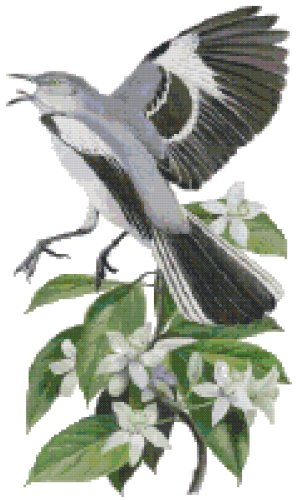 Florida State Bird (Northern Mockingbird) and Flower (Orange Blossom) Counted Cross Stitch Pattern