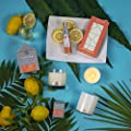 Trapp Home Fragrance Mist, 2.5oz - No. 72 Amalfi Citron