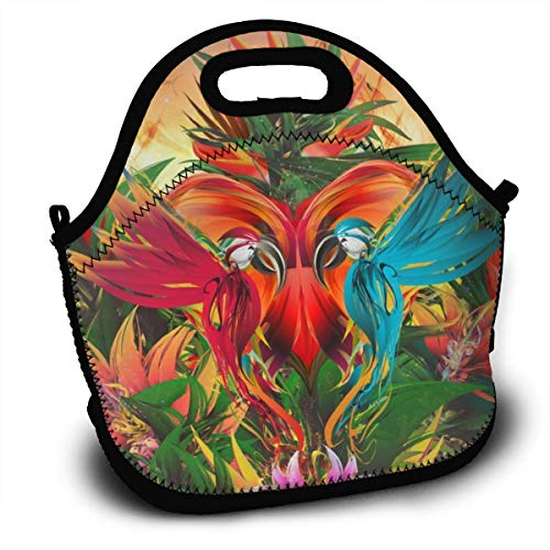 Dejup Lunch Bag Parrots Bird Tote Reusable Insulated Lunchbox, Shoulder Strap with Zipper for Kids, Boys, Girls, Women and Men