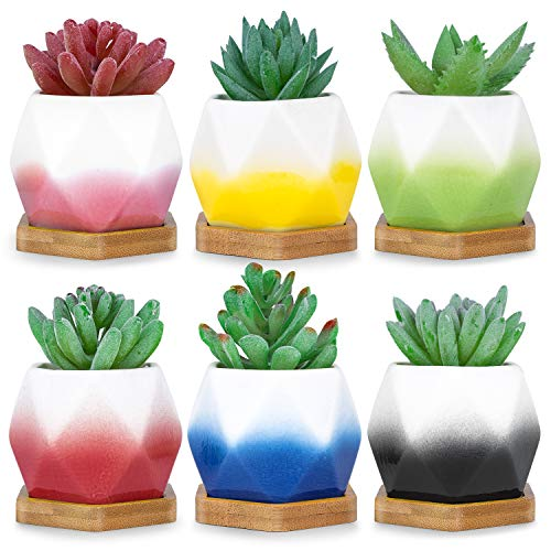 (HOMENOTE 2.75 inch Small Succulent Planter Set with Drainage Bamboo Tray Mini Plant Pots for Succulents Plants(Pack of)