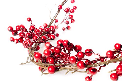 6 Foot Red Berry Garland - Perfect to Bring Holiday Cheer into Your Home This Season by CraftMore (Image #1)