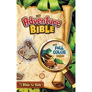 NIV*Adventure Bible (Full Color)-HC