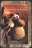 Front cover for the book Sleeping in Flame by Jonathan Carroll