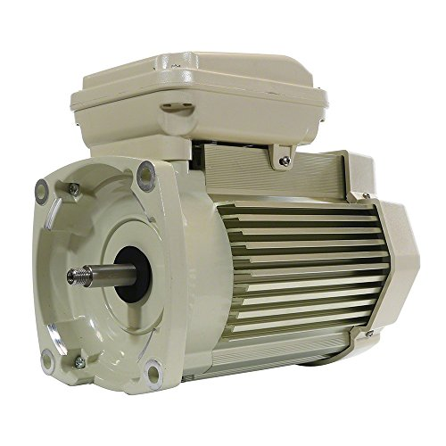 Pentair 355024S Single Phase Single Speed Square Flange Motor Replacement Pool and Spa Pump,1.5 HP, - Pentair Pool Replacement Pump
