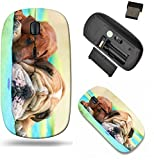 Liili Wireless Mouse Travel 2.4G Wireless Mice with USB Receiver, Click with 1000 DPI for notebook, pc, laptop, computer, mac book IMAGE ID: 15971414 Rhodesian ridgeback puppy and english bulldog best