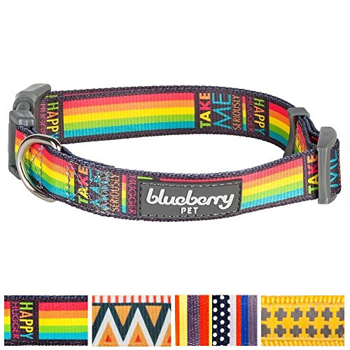 Blueberry Pet Rainbow Stripes Designer