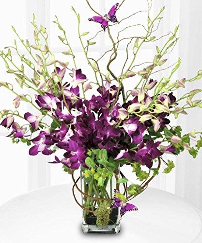 Deluxe Dendrobium Orchid Vase by Allen's Flower Market - Fresh Flowers Hand Delivered - Los Angeles Area by Allen's Flower Market