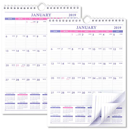 2019 Calendar - 2 Pack Desk/Wall Calendar 2019 for Family and Office, Thick Paper Calendar Planner with Bonus Notes Pages, January 2019 - December 2019, Wirebound, 8 x 11