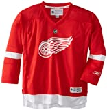 NHL Detroit Red Wings Replica