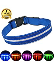 MASBRILL Waterproof Light Up Dog Collar - Rechargeable High Visibility Effective Safety LED Collar
