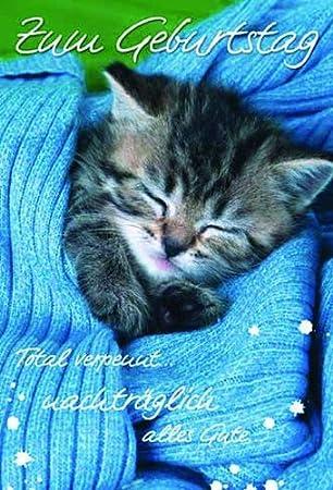 Karte Geburtstag Nachtraglich Katze Schlafend Liefermenge 5