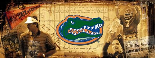University of Florida Gators Vintage Sports Wall Mural Wallpaper 3' x 8' by Sport Walls