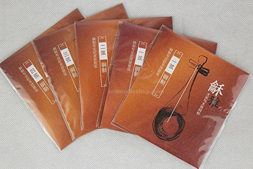 Professional Copper Pipa Strings, Heya Series Pipa Strings (#1(Steel, Diameter 0.25mm))