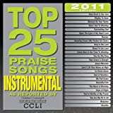 Top 25 Instrumental Praise [2 CD]