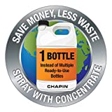 Chapin 20002 2 Gallon Lawn, Sprayer, Translucent