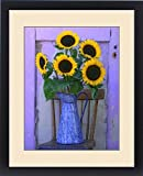 Framed Print of USA, Oregon, Willamette Valley. Fresh cut sunflowers displayed in enamelware