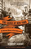 img - for The Gangs of New York: An Informal History of the Underworld book / textbook / text book