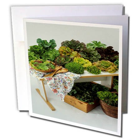 3dRose TDSwhite – Farm and Food - Food Lettuce Assortment Healthy Greens - 6 Greeting Cards with Envelopes (gc_285160_1) by 3dRose