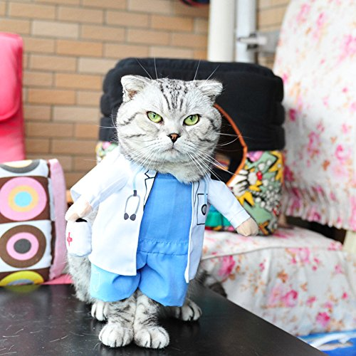 BlueSpace Pet Costume Doctor Clothes Dog Cat Pets Suit Halloween Costumes Pets Clothing for Small Dogs and Cats, Perfect for Halloween Christmas and Theme Party, (Pet Doctor Costume)
