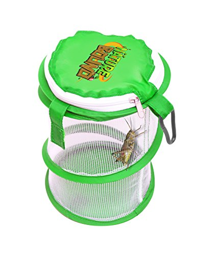 Bug Cage (Nature Bound Pop Up Critter Catcher Habitat Kit with Carabiner Clip & Zipper Lid, Green, One)