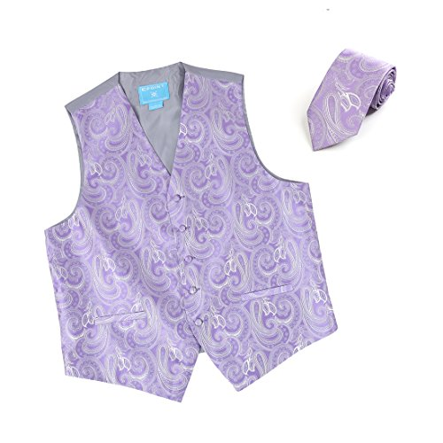 Epoint Men's Fashion Gift Giving Paisley Microfiber Dress Tuxedo Vest Neck Tie Set