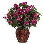 Bougainvillea with Vase Silk Plant