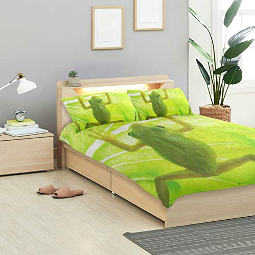 Tree Crystal Frog - IDO Green Tree Frog Kids Bedding Comforter Cover Sets Ultra Soft Crystal Velvet Cotton Satin Hotel Collection-Decorative 3 Piece Bedding Set with 2 Pillow Shams, Multicolor