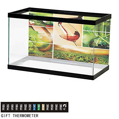 wwwhsl Aquarium Background,Wine,Wine Tasting and Grapevine Collage Green Fresh Field Pouring Drink Delicious,Green Ruby Caramel Fish Tank Backdrop 36