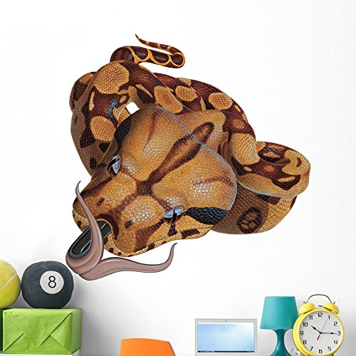 Boa Constrictor Snake Wall Decal by Wallmonkeys Peel and Stick Graphic (48 in W x 43 in H) WM70809