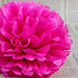 Rzctukltd 10PCS 10 Hot Pink Tissue Paper Pompoms Pom Poms Handmade Wedding Party Decorations by Rzctukltd