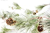 CraftMore Smokey Pine Garland 6' Great Indoor & Outdoor Deal (Small Image)