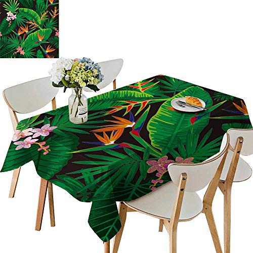 UHOO2018 Square/Rectangle Polyester Table Cloth Tropical Jungle Orchids strelitzias Easy Care Spillproof,50 x 81inch