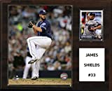"MLB San Diego Padres James Shields Player Plaque, 12""x15"""