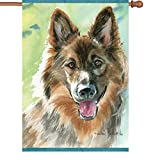 Premier Kites 52044 House Illuminated Flag, Loyal Shepherd, 28 by 40-Inch For Sale